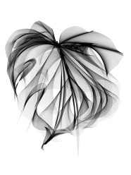 "Monstera leaf using ""Flowpaper"""